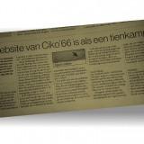 website_gelderlander1